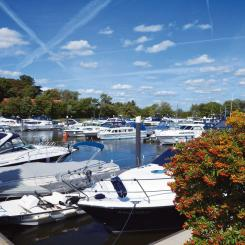 MDL WINDSOR MARINA